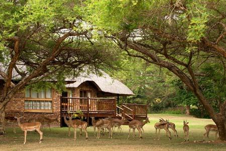 Kruger National Reserve