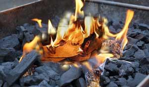 USE COAL TO BURN THE LOG-PAPER
