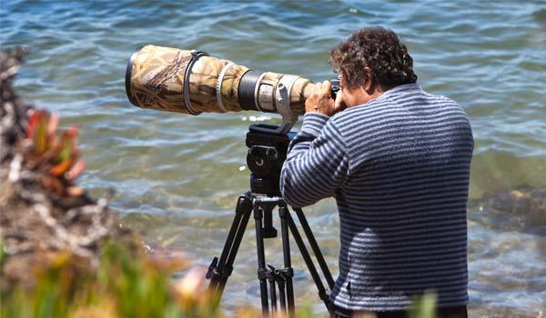 Best Tripod for 600mm Lens