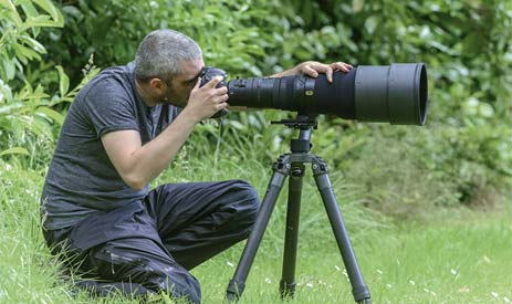 Tripod for 600mm Lens Buying Guide